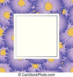 Purple Aster, Daisy Flower Banner Card