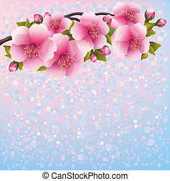 Purple background with sakura blossom - Japanese cherry tree