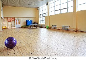 Purple ball in empty gym