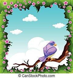 Purple bird on the branch