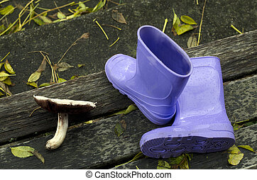 Purple boots and forest mushroom on a doorsteps during the ...