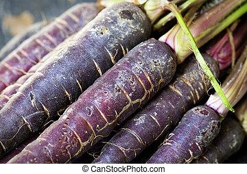 Purple heirloom carrots from a farmers' market, in closeup. Very high in antioxidants.