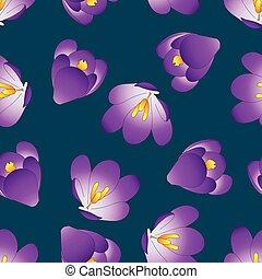 Purple Crocus Flower on Blue Indigo Background