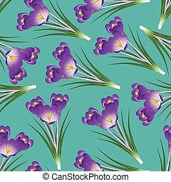 Purple Crocus Flower on Green Teal Background