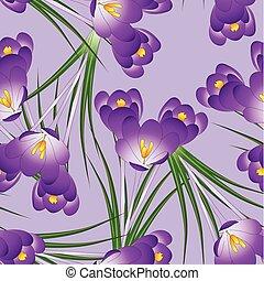 Purple Crocus Flower on Light Violet Background