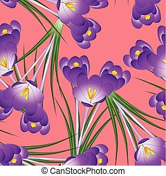Purple Crocus Flower on Orange Red Background