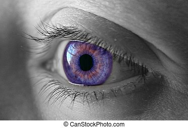 Purple Eye - Beautiful purple eye