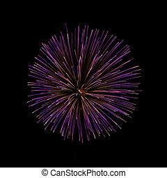 Purple Fireworks - Burst of purple fireworks on a black...