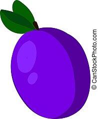 Purple flat prune, illustration, vector on white background.