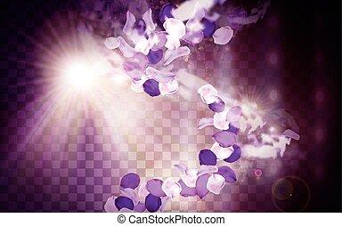 purple flower aroma