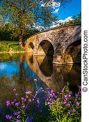 Purple flowers and Burnside Bridge reflecting in Antietam Creek, at Antietam National Battlefield, Maryland.