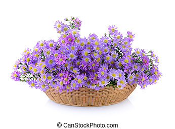 Purple flowers in basket on white background