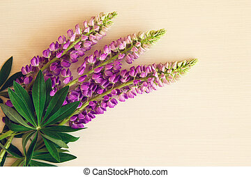 Purple flowers of lythrum with leaves on the white wooden...
