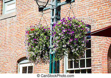 Purple Flowers on Lamp Post by Brick Wall
