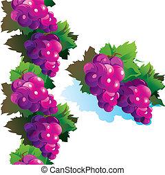 Purple grape.