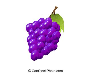 Purple Grapes on white background