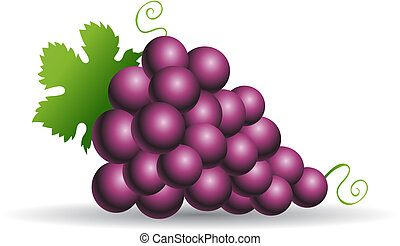 Purple grapes with green leaves isolated on white