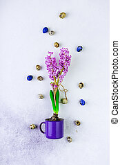 Purple hyacinth buld bflower in a violet mug, colored Easter eggs on white background