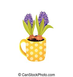 Purple hyacinths grow in a mug. Vector illustration on white background.