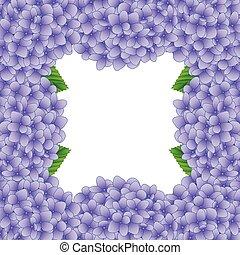 Purple Hydrangea Flower Border2