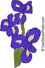 Purple iris, illustration, vector on white background.
