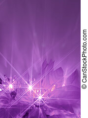 purple lights - abstract twinkiling poinsettia christmas...