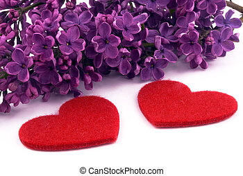 Purple lilac and red hearts