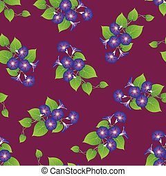 Purple Morning Glory on Violet Background. Vector...