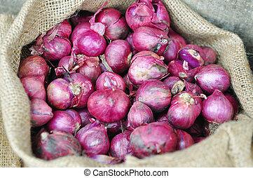 Purple onion in burlap sack in asia