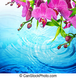 purple orchid on rippled blue water