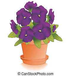 Purple Pansy Flowers, Clay Flowerpot - Purple Pansy flowers...