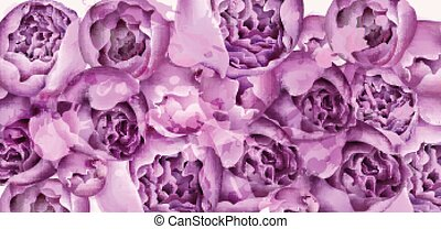 Purple peony flowers card Vector watercolor. colorful seasonal decors