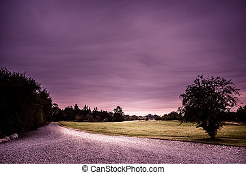 Nature path in a purple colored landscape