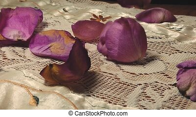 purple rose petals falling in slow motion. High quality FullHD footage