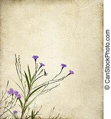 Purple Ruella Flowers Photo Illustration - Delicate purple...