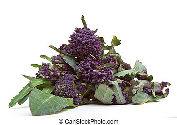 Sprouting Broccoli - Purple Sprouting Broccoli from low...