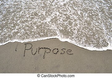 Purpose in the sand