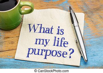 purpose?, que, meu, vida
