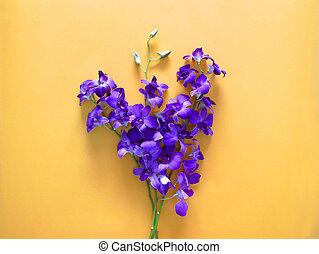 purpur, orkidé, blomningen, skapande, design