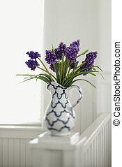 purpur, vase., blomningen, kastare