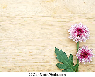 purpurowy, drewniany, kwiaty, gerbera, stół