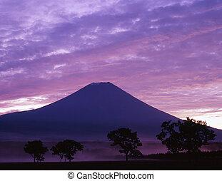 purpurowy, mgła