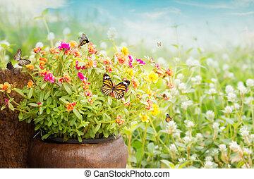 purslane, fleur, commun, fond