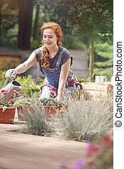 Pursuing a gardening career