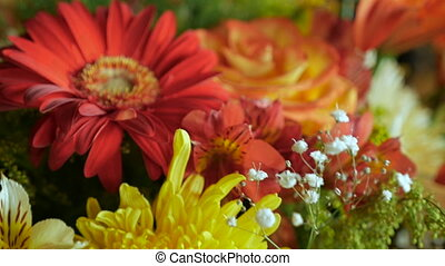 Push in close up of an assortment of colorful flowers - Push...