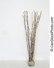 Pussy willows vase - Pussy willows branches ina glass vase...