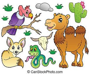 pustynia, zwierzęta, zbiór, 1