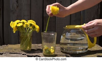 Putting a dandelion into a glass in slow motion. Shot...