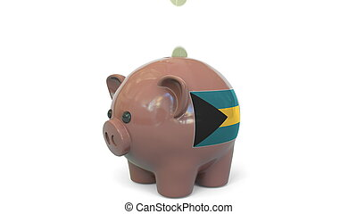 Putting money into piggy bank with flag of Bahamas. Tax system system or savings related conceptual 3D rendering