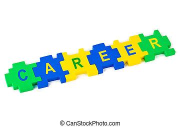 Puzzle Career